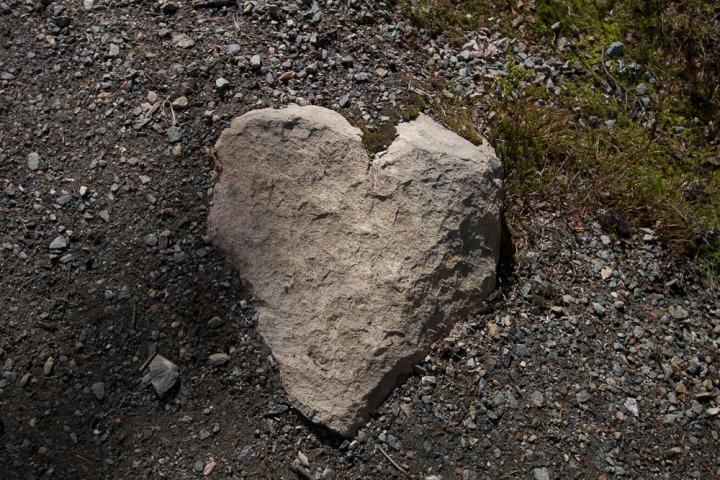 Sun sydän onviisas