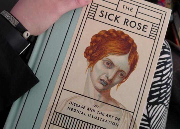 Sick Rose and the greatInsight
