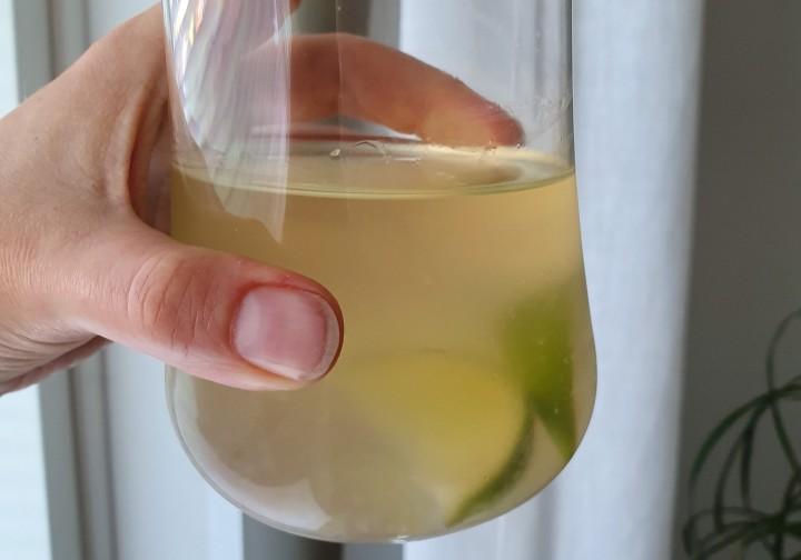 Cold Brew Tea – kylmäuutettutee