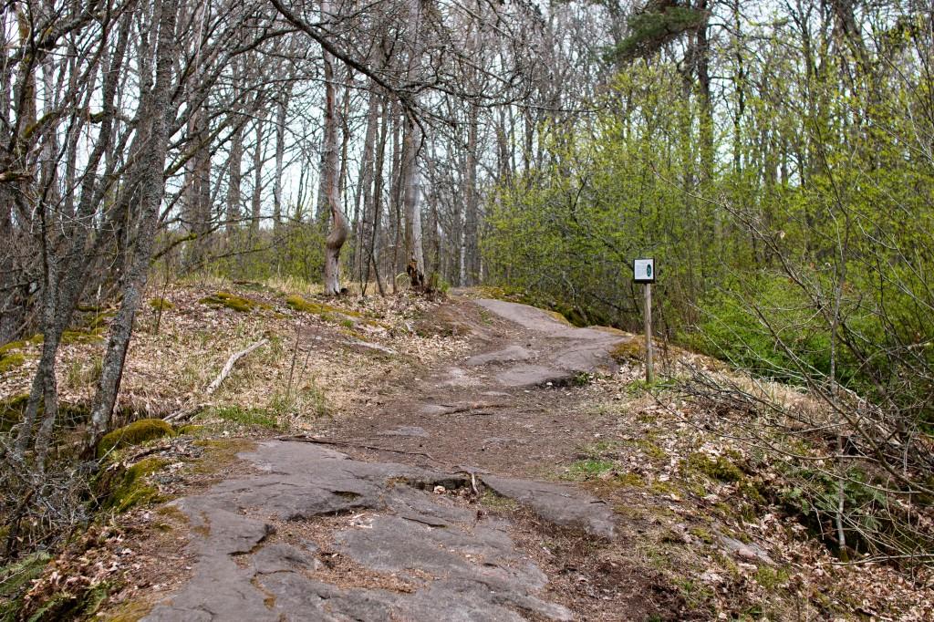 Kallioinen polun alkupää Lohjansaaressa, Paavolan tammen lähettyvillä.