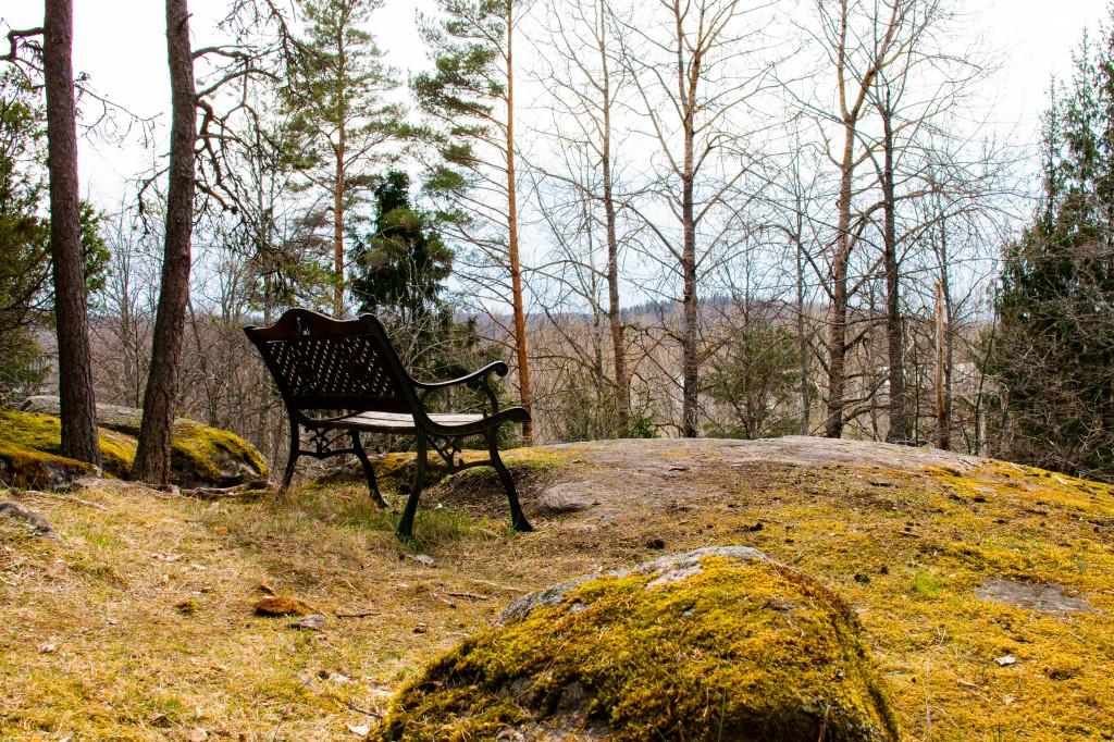 Penkki Lohjansaaren luontopolun varrella kallion päällä.