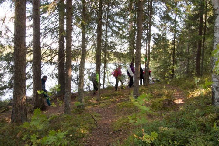 Joogamatto rinkkaan ja metsäänkäy