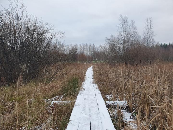 Lähiretkeilyä – Mukkulanpuistopolku